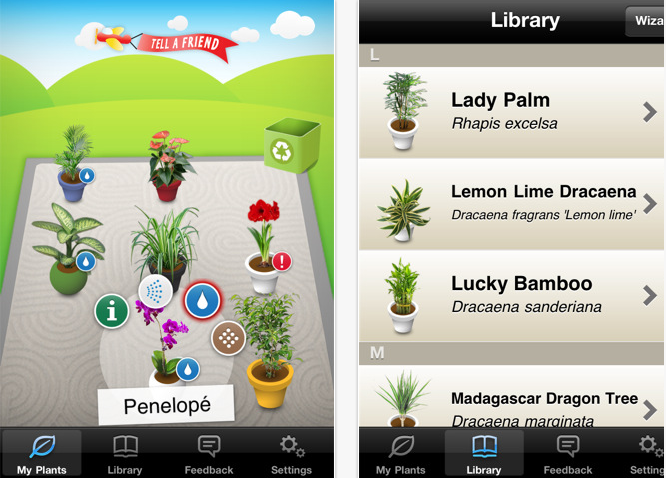Koubachi App Screenshot