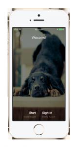 Dog Social Network App