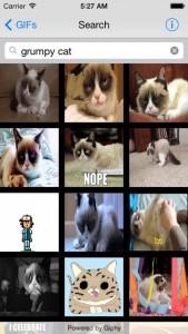 iPhone GIF Explorer App